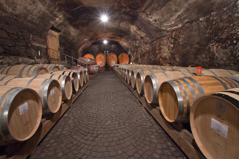 Kettmeier / Santa Margherita winery